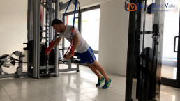allenamento, pillole workout, pettorali
